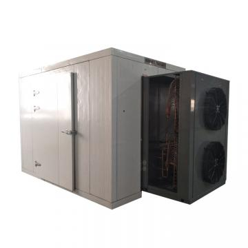 Low Temperature Vacuum Drying Machine for Fruit and Vegetable Dehydration