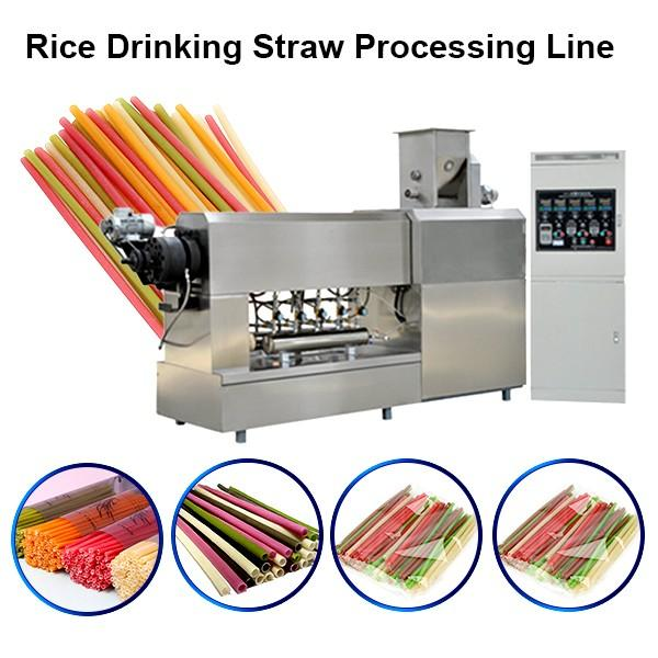 Fully Automatic Drink Straw Rice Flour Straw Making Pasta Noodle Making Machine #1 image