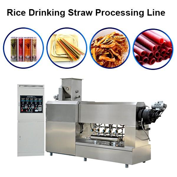 Biodegradable Drinking Straw Extruder #1 image