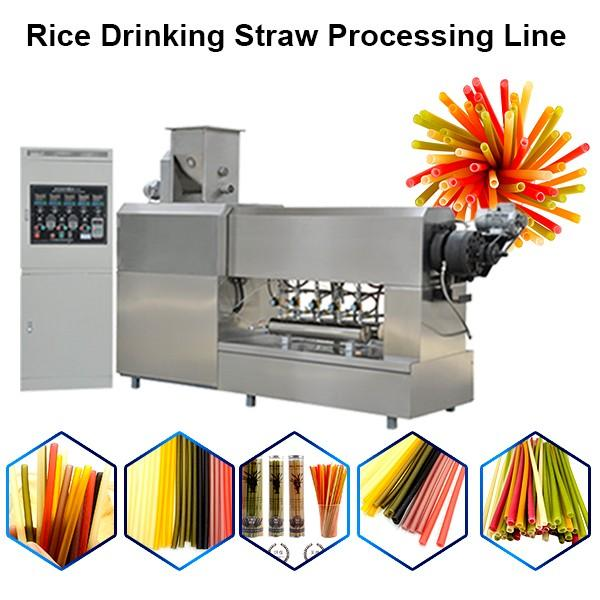 Food Grade Biodegradable Degradable Rice Tapioca Straw Extruder Production Line #1 image