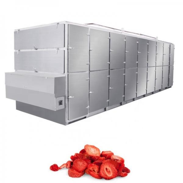 Electric and Gas Instant Drying Stainless Steel Fruit Drying Oven #1 image