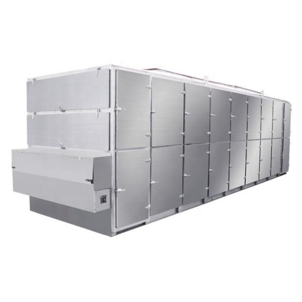Vegetables and Fruits Dehydration Drying Machine in Food Industry #1 image