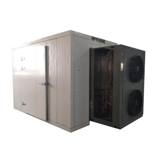 Low Temperature Vacuum Drying Machine for Fruit and Vegetable Dehydration #1 image