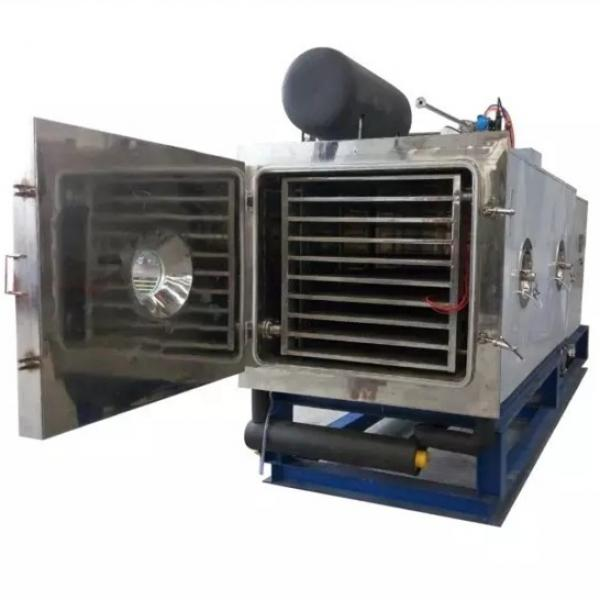 CT-IV 480kg/time fruits and vegetables dehydration oven machine/equipment #1 image