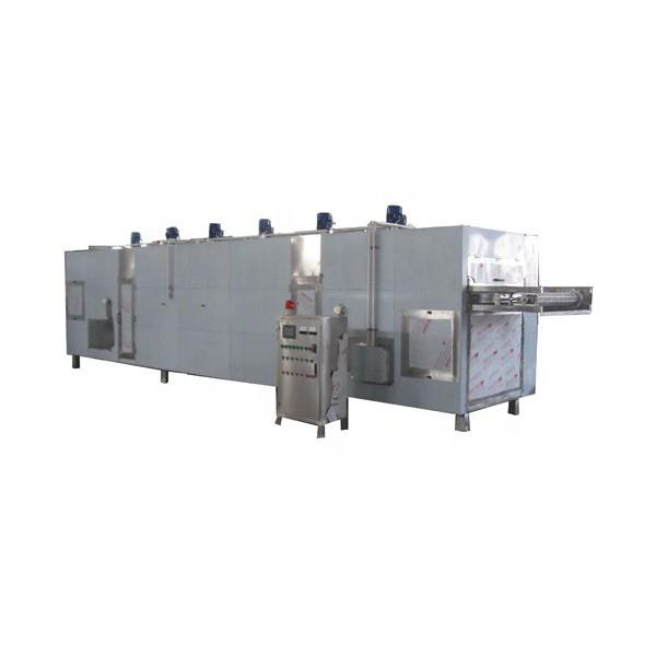 Ce Tunnel Belt Industrial Betaine Microwave Dryer #1 image