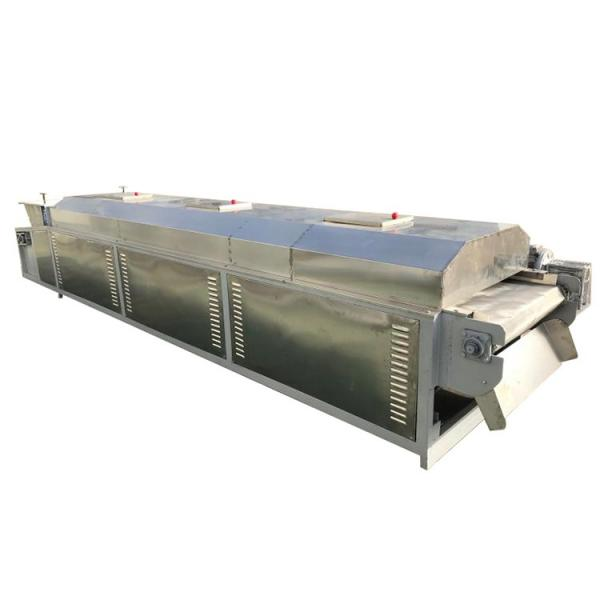 Tunnel Continuous Industrial Microwave Oven Dryer Microwave Drying Machine #2 image