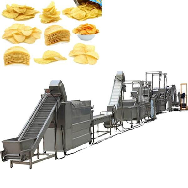 Potato Carrot Cutting Machine French Fries Ginger Slicer Ginger Chips Cutting Machine #1 image