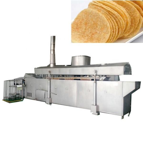 Vegetable Potato Chip Washing Peeling Cutting Slicer Conbined Machine #1 image